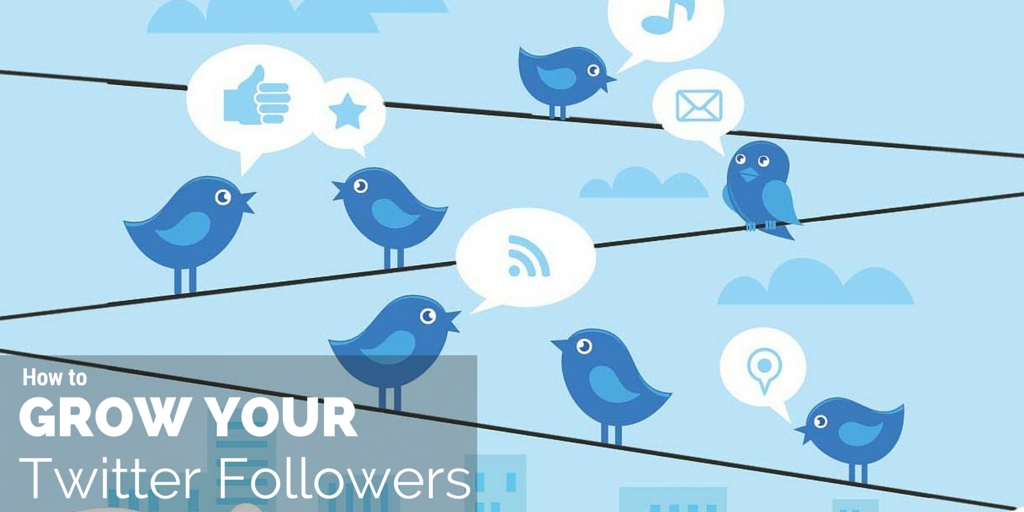 How to grow your twitter followers